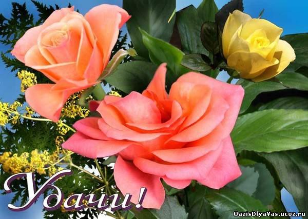http://oazisdlyavas.ucoz.ru/_ph/193/2/89789932.jpg