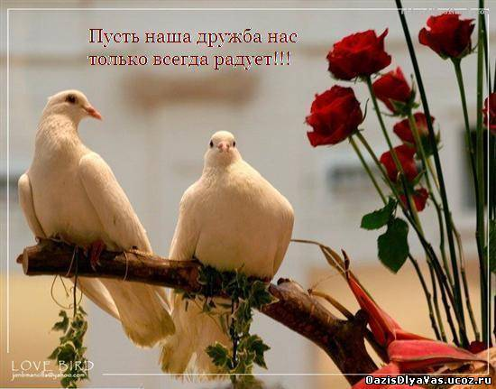 http://oazisdlyavas.ucoz.ru/_ph/214/2/847161391.jpg