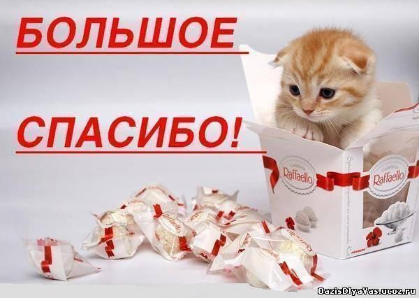 http://oazisdlyavas.ucoz.ru/_ph/230/2/956166341.jpg